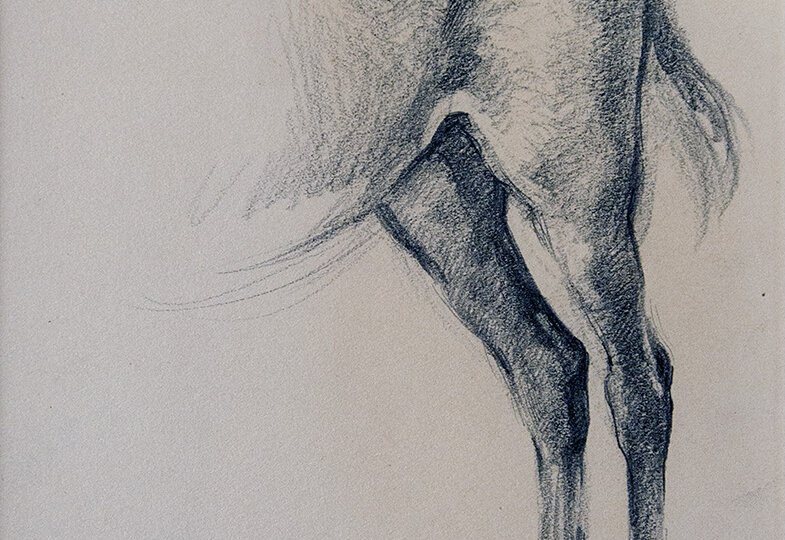 Francis Luis Mora (1874-1940) [RA 1899-1940] : Hind end of a horse, ca.1910.