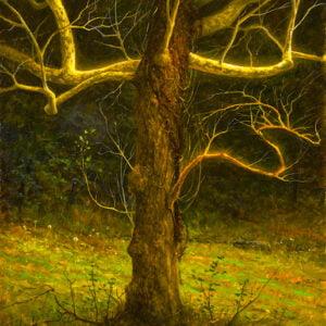Ken Salaz (b.1970) : Tree at Rockefeller preserve, 2000s.